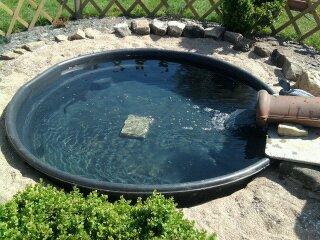 Mon bassin avec un couple d esturgeon blog de hinthoroz55 - Bassin avec un pneu pau ...